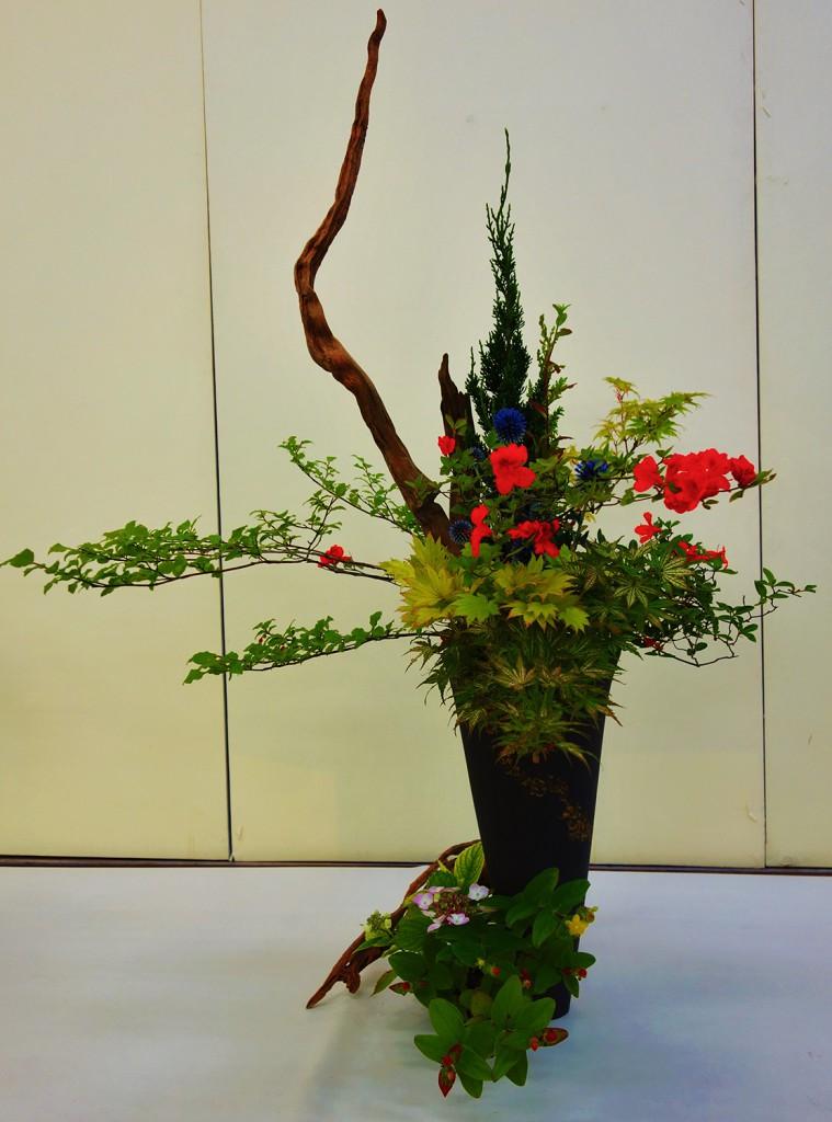 d u00e9couverte de l u0026 39 ikebana  l u0026 39 art floral avec kenji tsutsumi