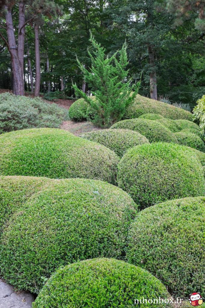 Découverte du plus grand jardin japonais d'Europe